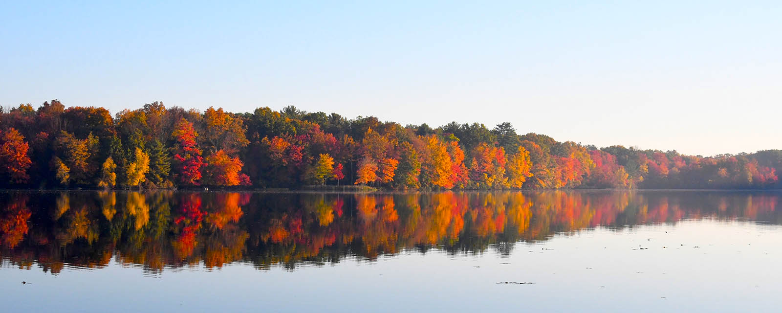 Trout Lake aligned with trees covered in orange & red leaves